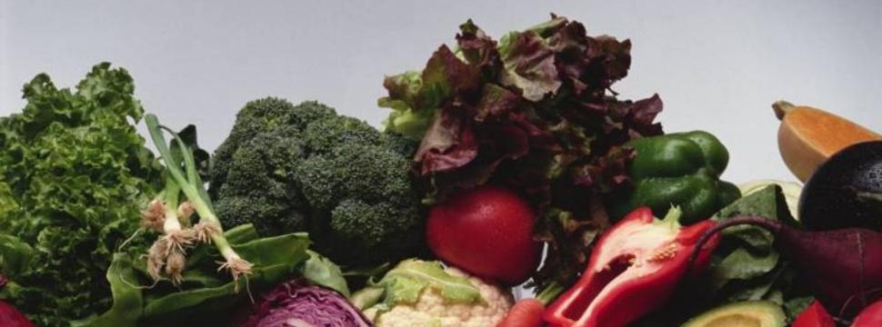 Gesundheitsbewußt Leben mit Bio-Produkten